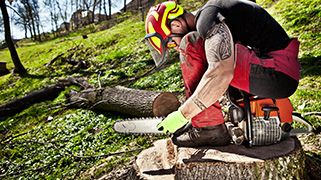 Chainsaw Safety Online Safety Training Courses